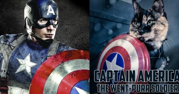 貓貓玩Cosplay,效果更吸引